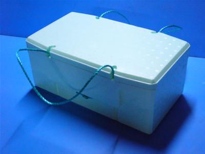 フレッシュボックス土産箱